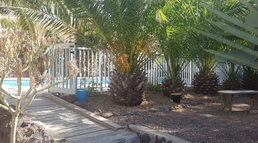 rural-house-for-sale-in-san-miguel-tenerife-38620-0109-11